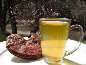 You can have Reishi as a tea to get the polysaccharides